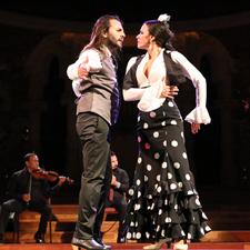 Òpera y Flamenco, Historia de un amor